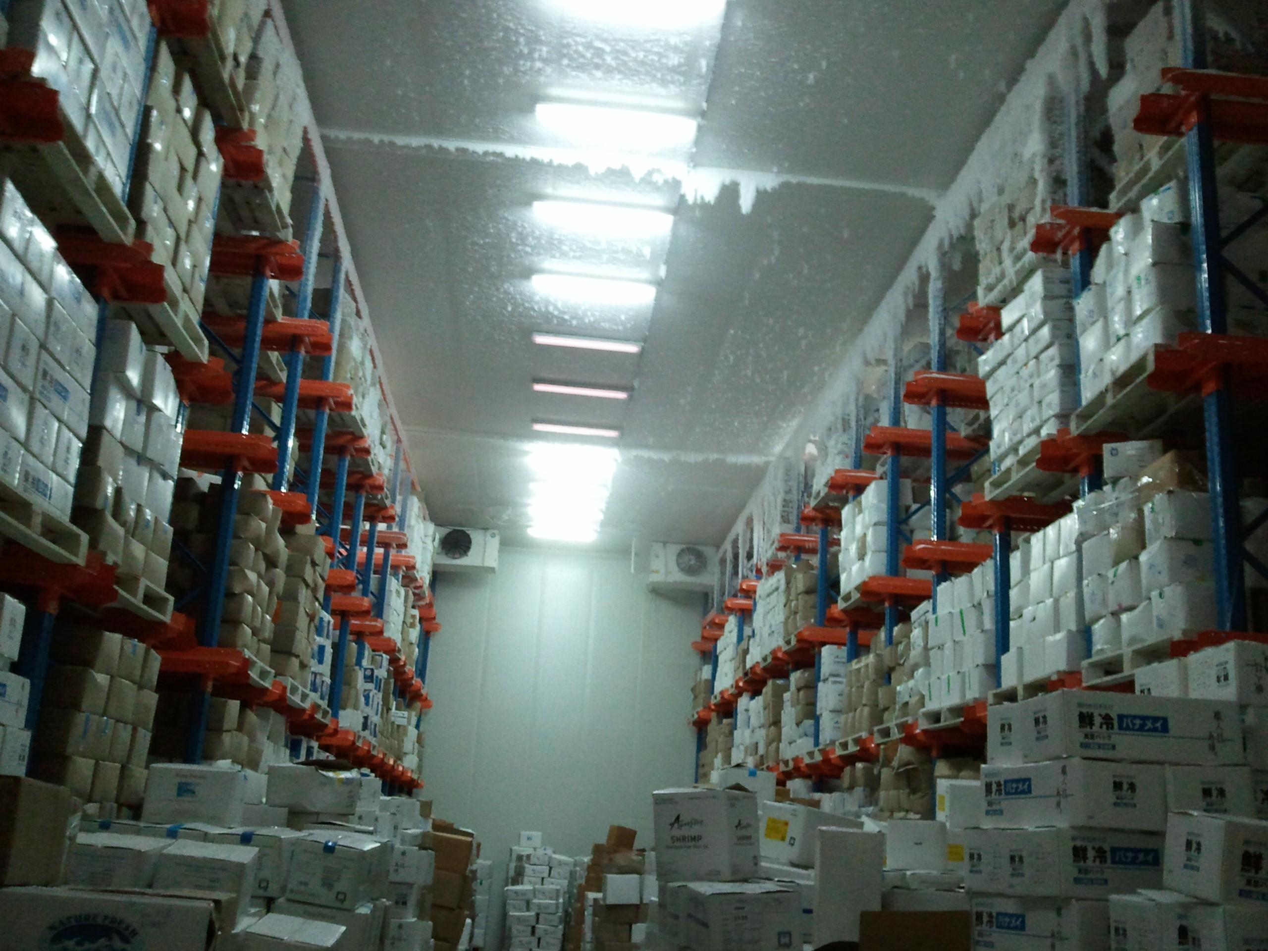 Cold Storage Industry Indusref Com Indus Refrigeration